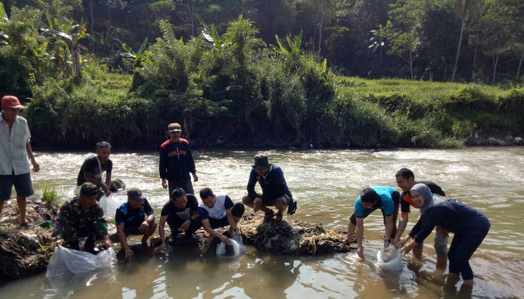 Pelaksanaan BBGRM ; Kades Sundawenang Tebar Benih Ikan dan Tanam Pohon